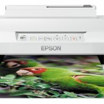 EPSON C11CD36402 EXPRESSION PHOTO XP-55 A4 9PPM COLORE WIFI