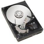 HDD 1000 GB SERIAL ATA III