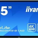 IIYAMA TE6503MIS-B1AG 65 20-POINTS TOUCH SCREEN 3840X2160 LED IPS