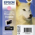 EPSON C13T09664010 CARTUCCIA SERIE T0966 HUSKY MAGENTA CHIARO