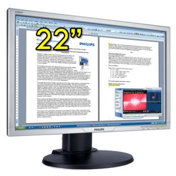 Monitor LCD 22 Pollici Philips 220BW Wide VGA DVI Multimediale Nero/Argento