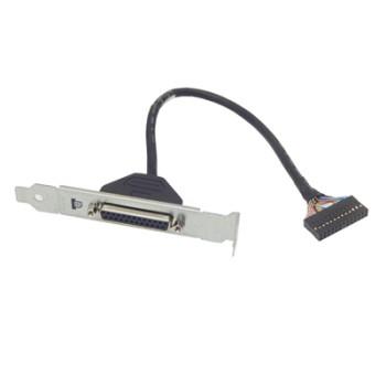 Scheda PCI Express a Porta Parallela HP 611900-001